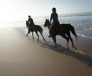 Rides à couper le souffle Sunset Équitation